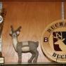 Buchanan Bucks win Spring 2021 Championship!